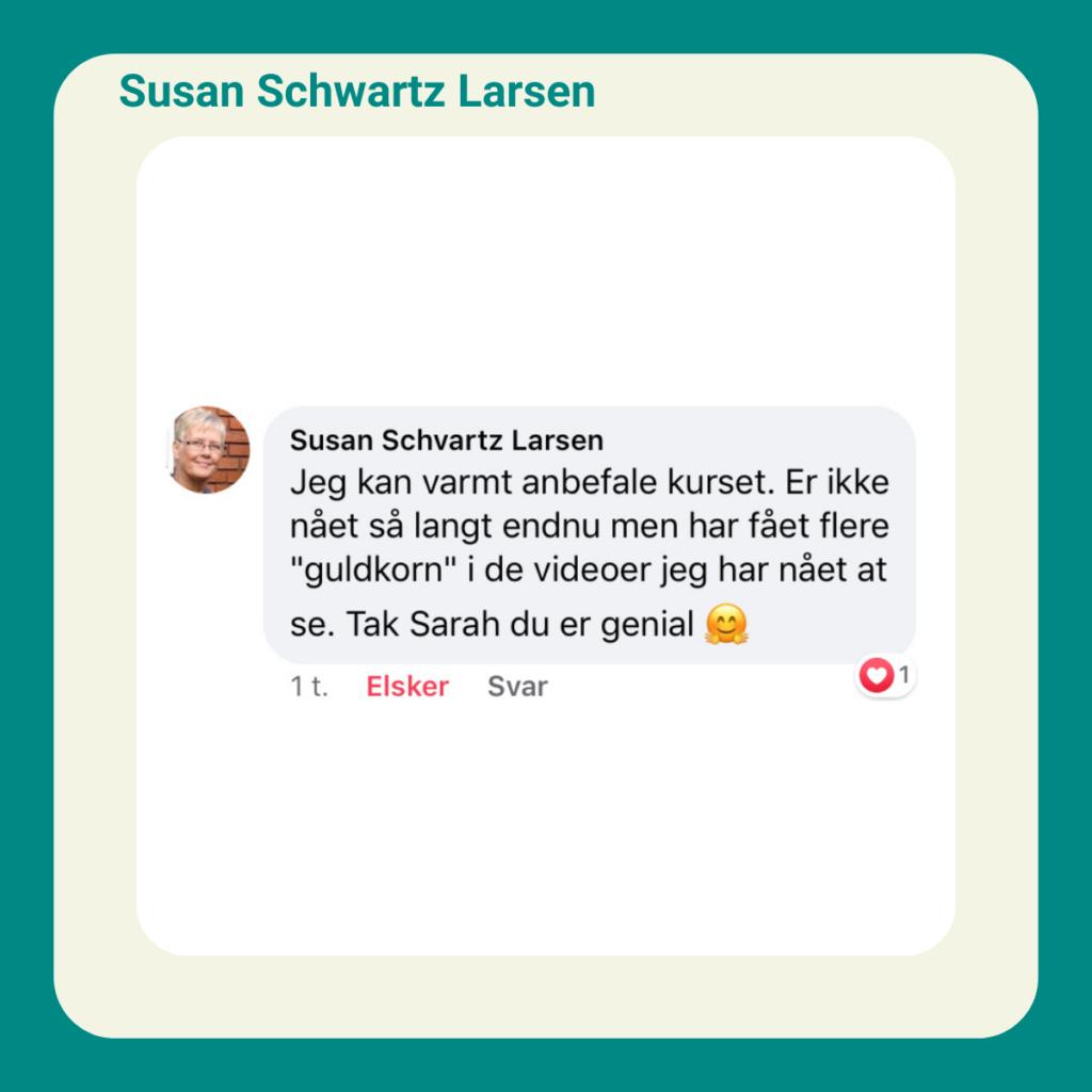 Susan Schwartz udtalelse undgå spildtid